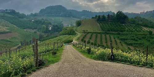The Best Wineries in Northern Italy, According to One T+L A-List Advisor