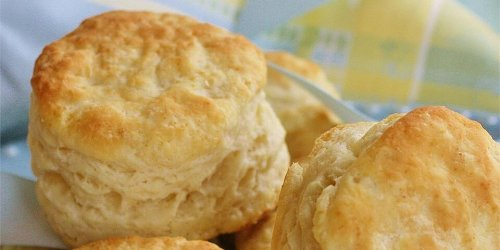 25 Homemade Biscuit Recipes to Make From Scratch