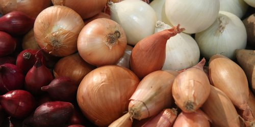 A Guide to Onions Types and When To Use Them
