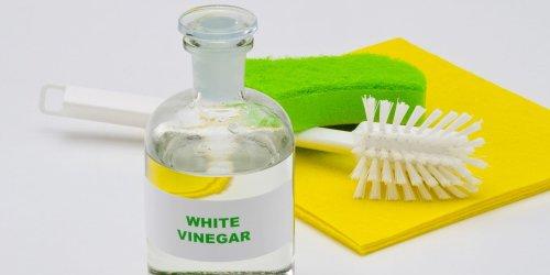 8 Ways to Clean Your Kitchen Using Plain Old White Vinegar