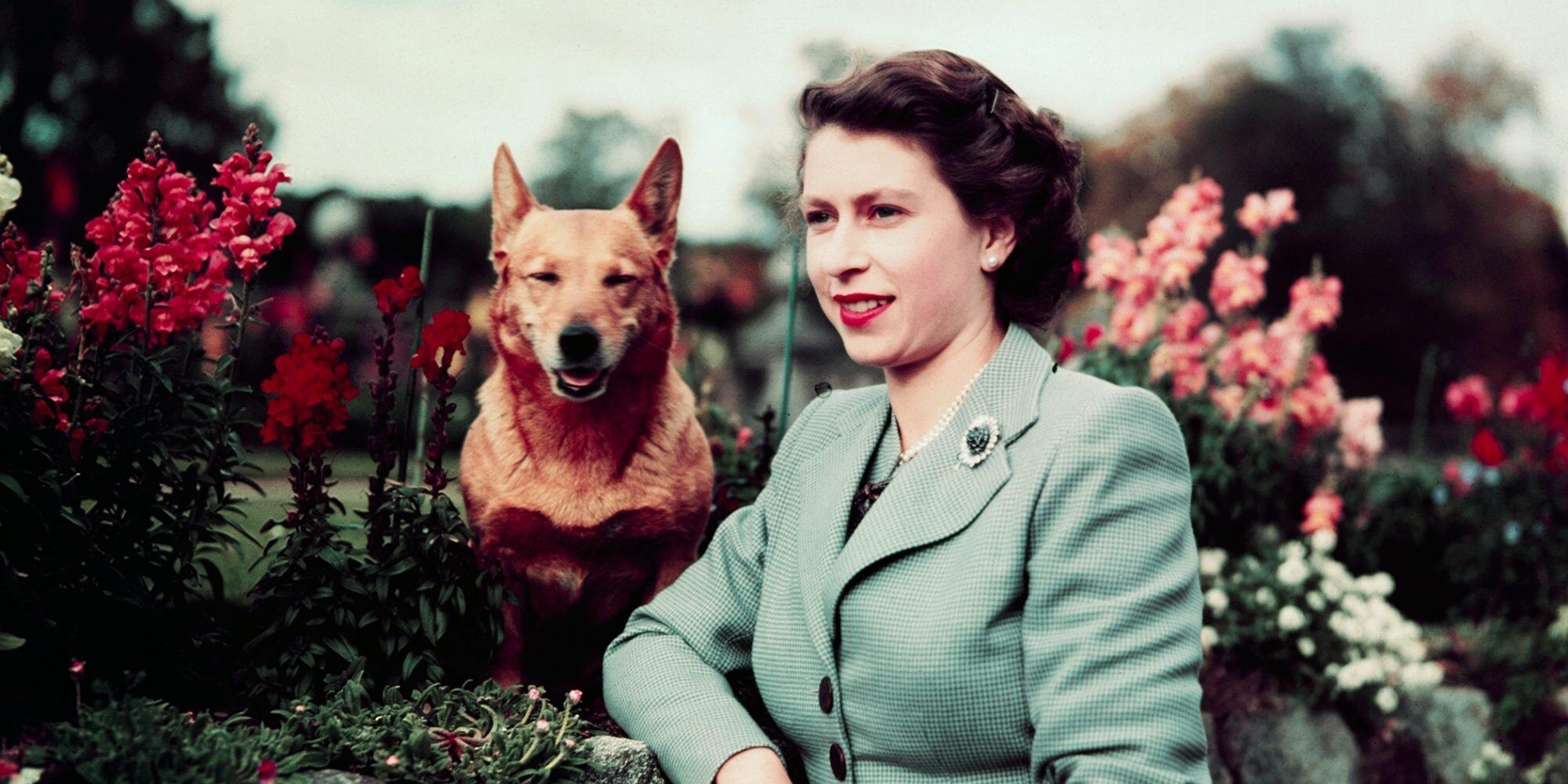 A Timeline of Queen Elizabeth's Lifelong Love of Corgis