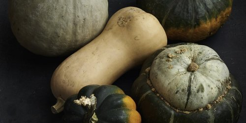 Our Very Best Winter Squash Recipes, Featuring Acorn, Butternut, Delicata, and More