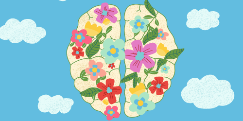 What Mindfulness Does to Your Brain: The Science of Neuroplasticity