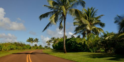 There's a New Way to Get Around Hawaii Without Having to Rent a Car