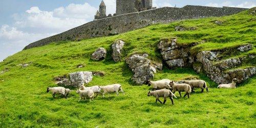This 82-mile Trek Through Stunning Parks and Coastlines Is Northern Ireland's Best-kept Secret
