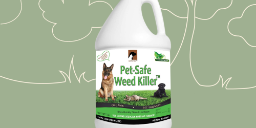 These Products Kill Weeds Without Harming Pets