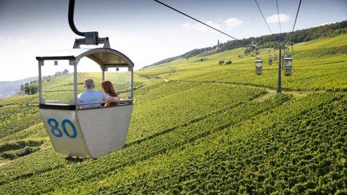 Wandern im Rheingau: Die schönsten Touren   MERIAN