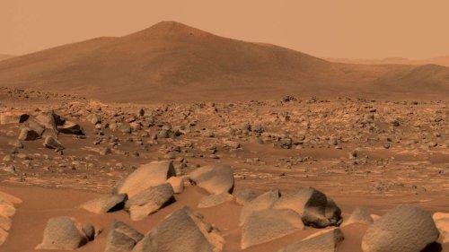 """Nasa feiert Mars-Entdeckung: """"Diesen Beweis kann man nicht verstecken"""""""