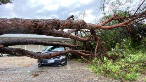 Neues Unwetter-Chaos in Italien: Tornado trifft Toskana mit Wahnsinns-Geschwindigkeit - Bilder zeigen Ausmaß