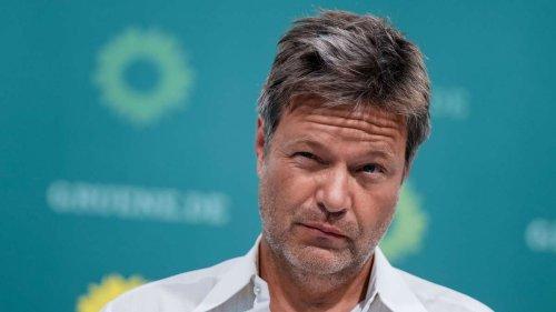 So hoch ist das Gehalt von Grünen-Co-Chef Robert Habeck