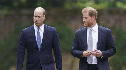 Royaler Brüder-Streit: Zerstört Harry jetzt Williams Ruf? Experte äußert Befürchtung