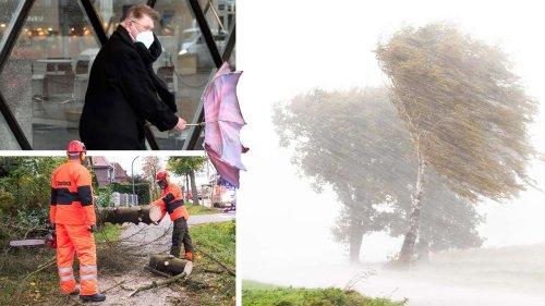 Alarmstufe Rot in Deutschland: Tornado-Gefahr in Ostdeutschland - Bundesamt warnt nun auch vor Sturmflut