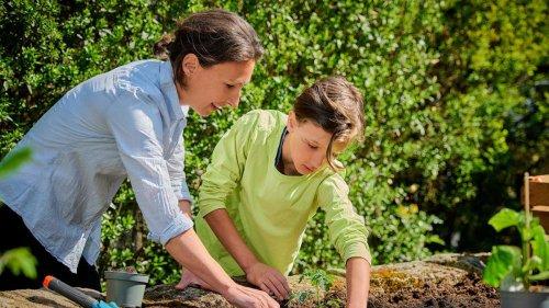 Hochbeet, Vlies und Co.: So bereiten Sie Ihren Garten und Balkon für den Winter vor