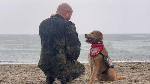 Therapiehund »Halvar« hilft einem Füssener Afghanistan-Veteranen, mit seinem Trauma zu leben