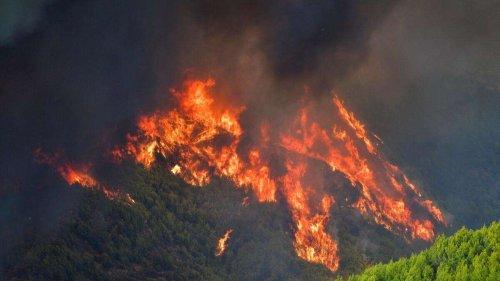 Olympia brennt: Verheerende Feuer in Griechenland breiten sich immer weiter aus