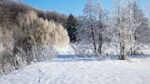 Mordskälte ab Oktober: Kaltfront bringt frühen Schnee – und einen eisigen Winter