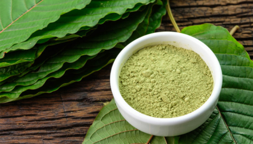 FDA Is Looking for Public Input on Whether the UN Should Ban Kratom Globally