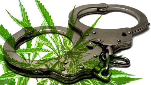 Texas Just Passed Bill to Decriminalize Minor Cannabis Possession