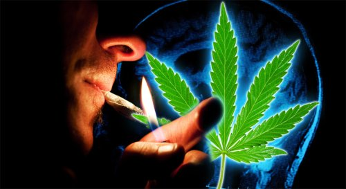 Cannabis Can Decrease Risk of Digestive Disorders In Those with Schizophrenia