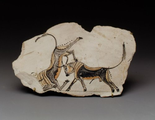 Ostracon with fighting bulls | New Kingdom, Ramesside | The Metropolitan Museum of Art