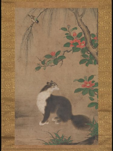 Musk Cat mid–late 16th century