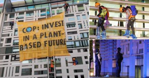 Protesters climb Government building demanding UK go vegan