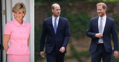Diana 'would be splitting time between US and UK' for Harry and William