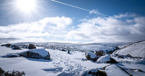 Couple drove to Dartmoor to take part in 'coldest ever sex'
