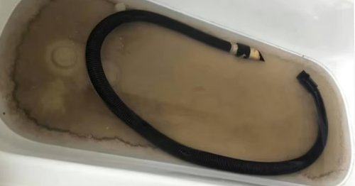 Shocking photo proves the importance of cleaning your vacuum hose