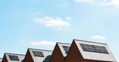 Why did the Green Homes Grant fail and what is the impact on home and business owners?