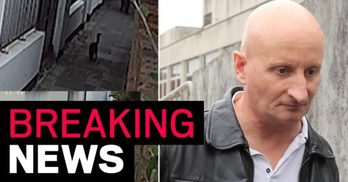Brighton cat killer who stabbed pets and left them dying on doorsteps is jailed
