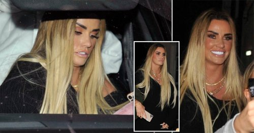 Katie Price all smiles as she gets to work at make-up masterclasses after Turkey getaway with Carl Woods