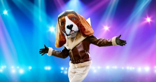 Who is Beagle on the Masked Dancer? All the clues, hints and theories