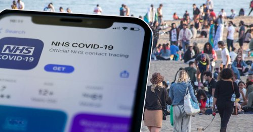 NHS app not yet ready as jab passport despite holidays allowed 'in weeks'