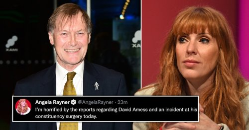 Angela Rayner slammed for 'trite sympathy' after repeatedly saying 'Tory scum'