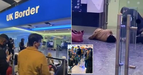 Passenger collapses at Heathrow 'after waiting seven hours in border queue'
