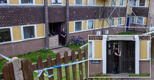 Murder probe launched as body found in search for missing man