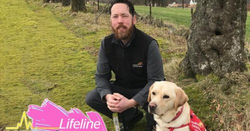 'Training dogs to sniff out deadly diseases is serious work – but I have to make it fun'