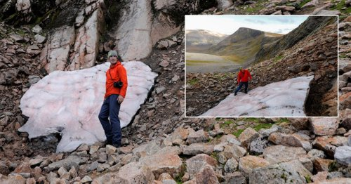 UK's oldest patch of snow is about to melt for first time since last ice age