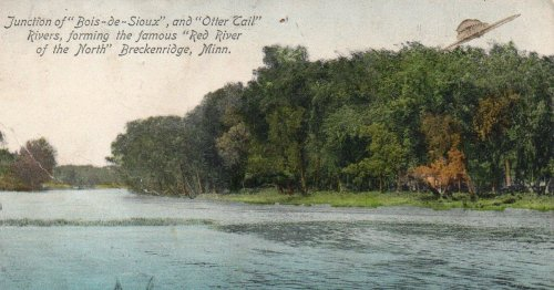Postcard sent in 1909 shows UFO skimming treetops