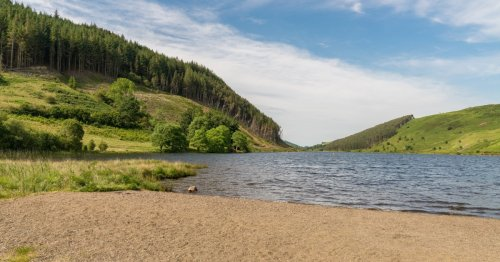 TripAdvisor review slams North Wales lake for hills, lack of McDonald's and too much beauty