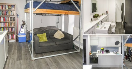 Studio flat with a bed suspended over the sofa (and right by the kitchen sink) on sale for £140,000