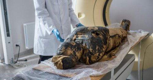 Egyptian mummy thought to be a priest was actually a pregnant woman