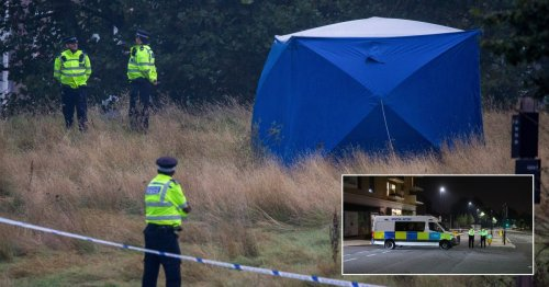 Woman's body found in park as man arrested for murder