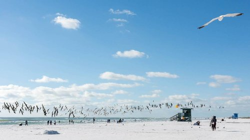 The Internet says this spot is everybody's favorite Florida beach. It's not in Miami
