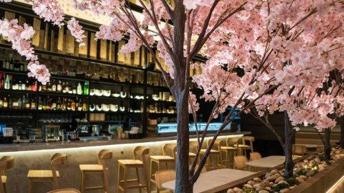 Disfruta de la comida japonesa bajo cerezos en flor en un nuevo restaurante de Brickell