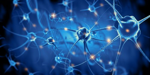 How Complex Is a Single Neuron in Your Brain?