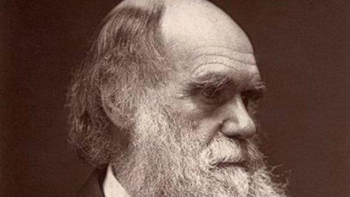 Charles Darwin, Glutton