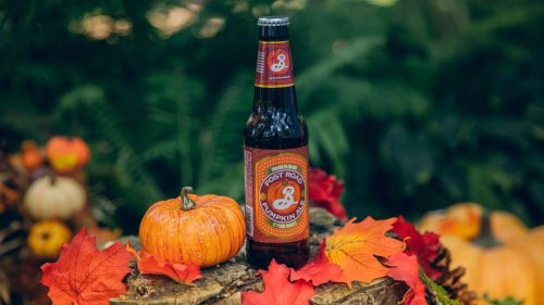 From Colonial Swill to Craft Craze: The History of Pumpkin Beer