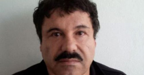 Regular folks who got involved with drug cartels - and the horror that followed